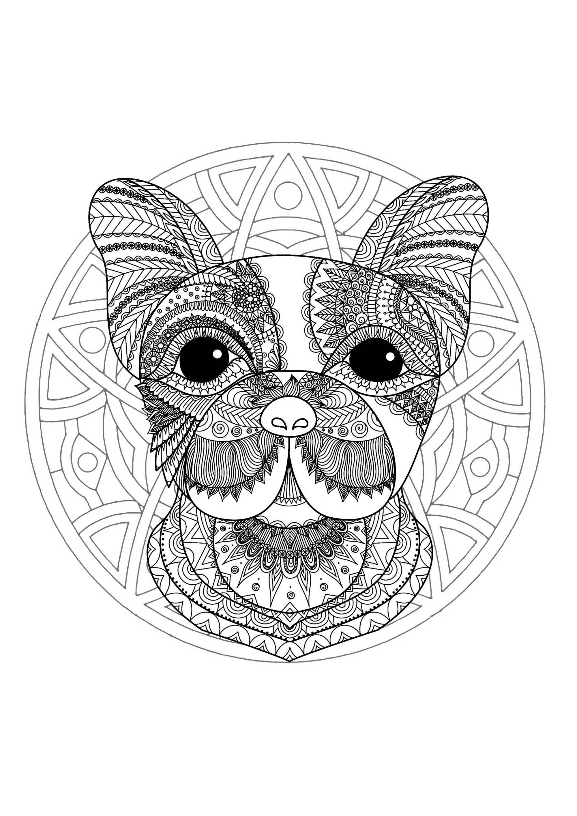 easy animal mandala coloring pages the best free mandala drawing images download from 2016 easy pages mandala coloring animal