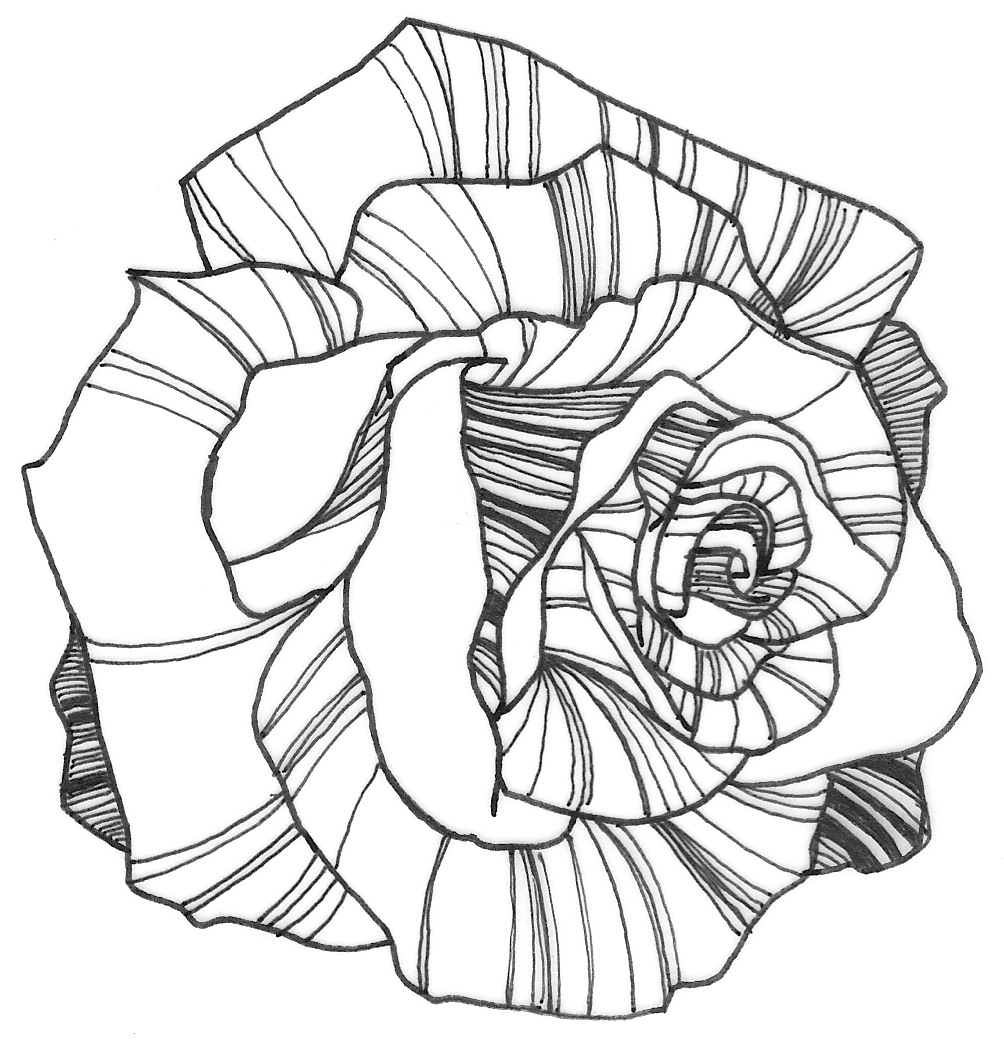easy cute rose coloring pages all kids appreciate coloring and free girl coloring pages cute rose pages coloring easy