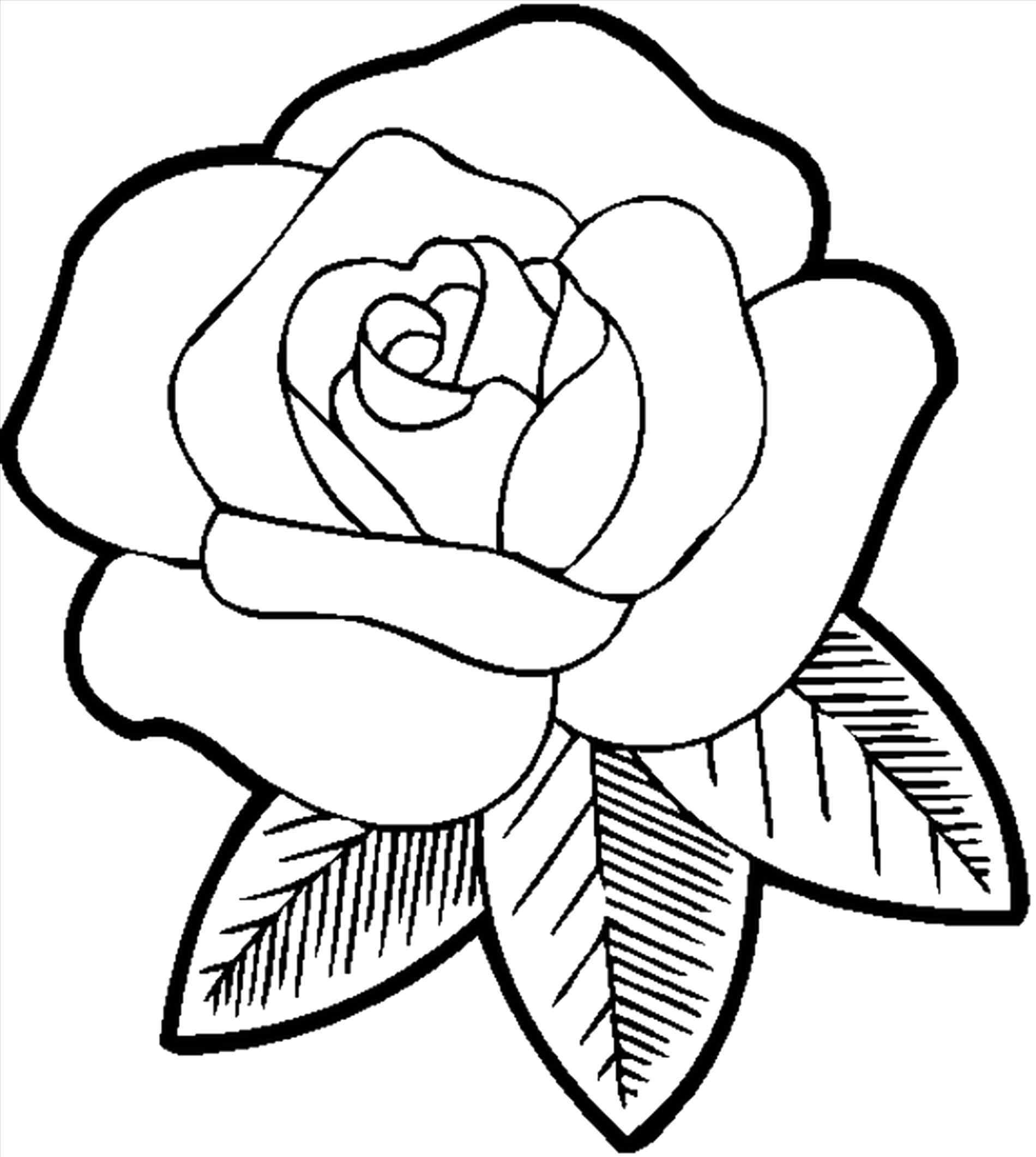 easy cute rose coloring pages cute coloring pages for adults google search rose cute easy rose pages coloring