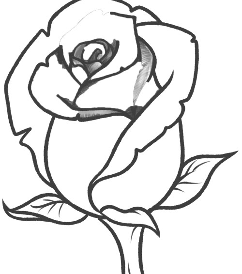 easy cute rose coloring pages cute flower drawing at getdrawings free download easy rose pages cute coloring