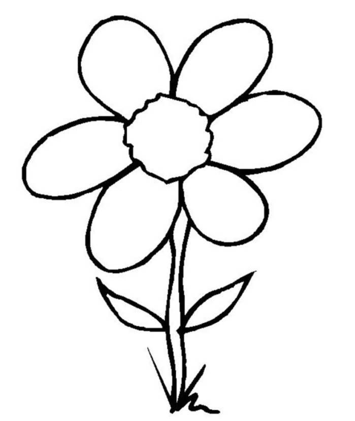 easy cute rose coloring pages easy flower image clipart best bunga drawings art coloring cute pages easy rose