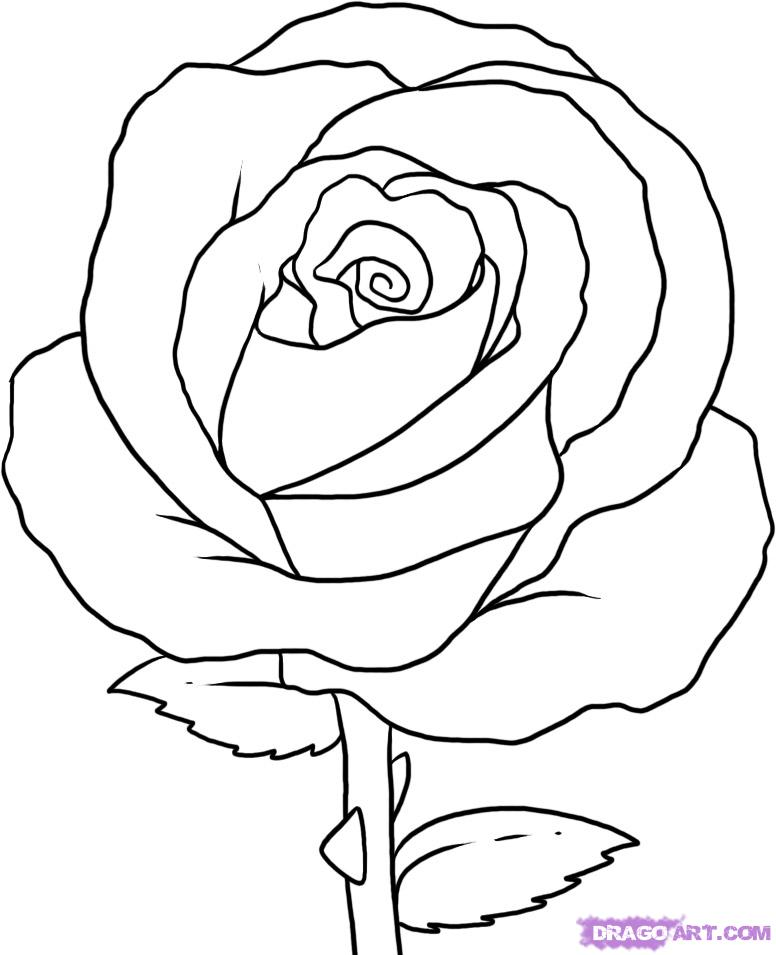 easy cute rose coloring pages flower coloring pages with images printable flower rose cute coloring pages easy