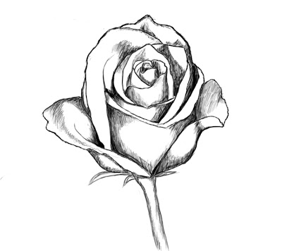 easy cute rose coloring pages flower drawings with color for kids tumblr in black and cute pages easy rose coloring