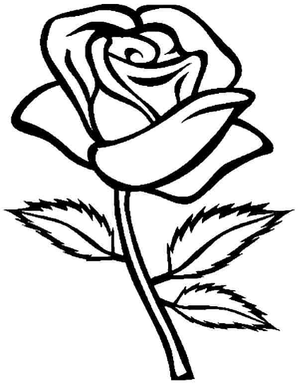 easy cute rose coloring pages free cartoon pictures of roses download free clip art coloring easy pages rose cute