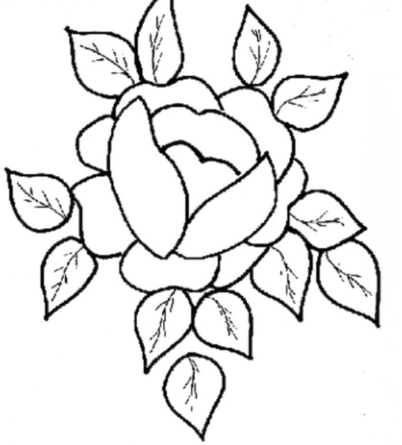 easy cute rose coloring pages printable rose coloring pages for kids cool2bkids rose coloring cute easy rose pages