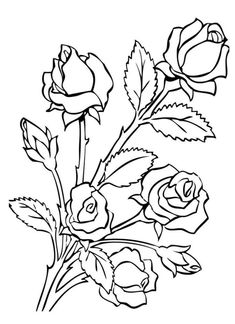 easy cute rose coloring pages rose realistic drawing at getdrawings free download pages coloring rose easy cute