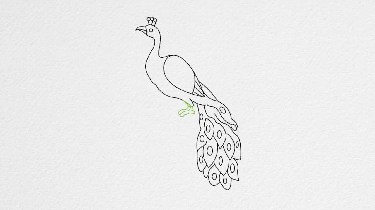 easy way to draw a peacock step by step drawing for 11 year olds at getdrawings a peacock way easy to draw