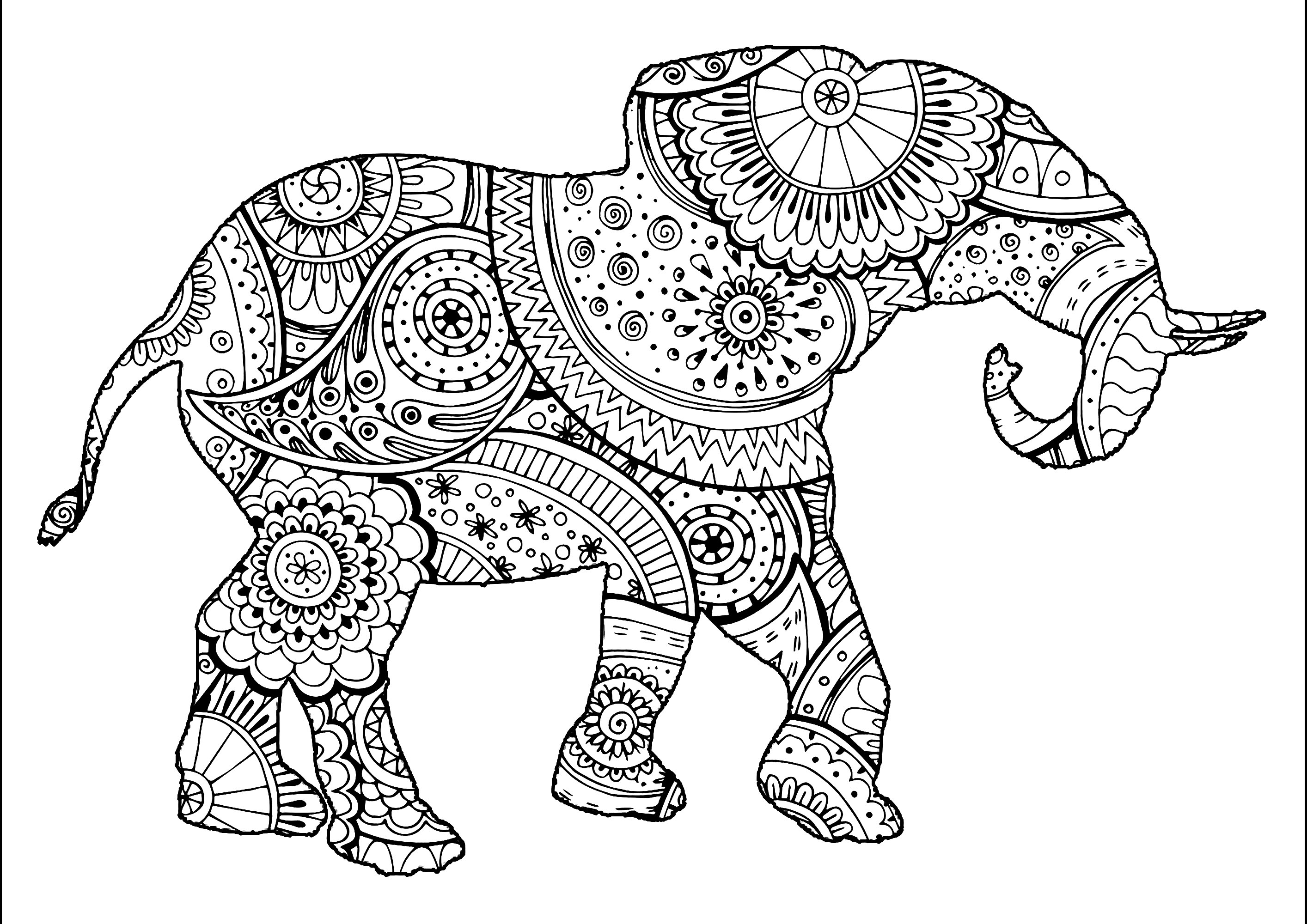 elephant color pages elephant coloring pages free download on clipartmag color elephant pages