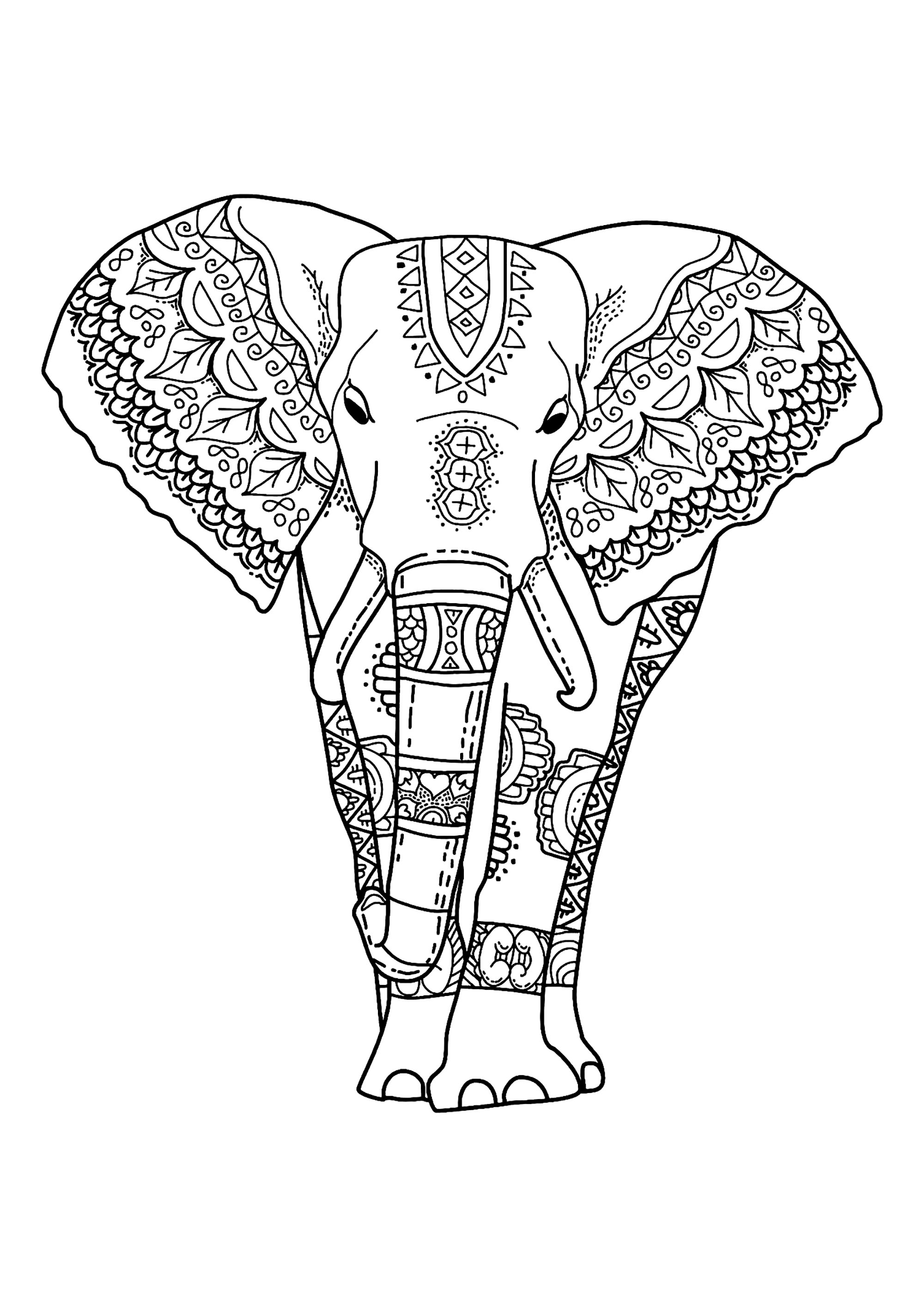 elephant color pages elephants to color for children elephants kids coloring elephant color pages