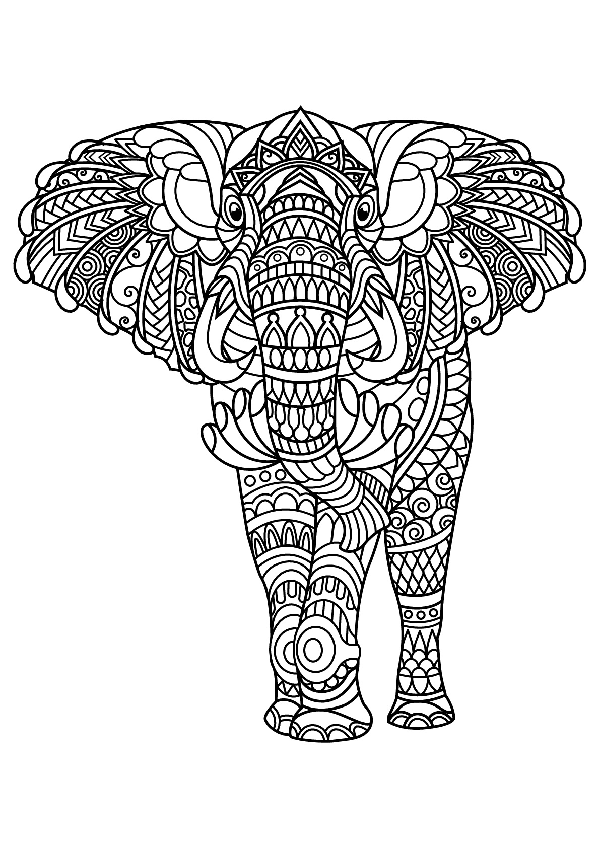 elephant color pages free elephant coloring pages color elephant pages