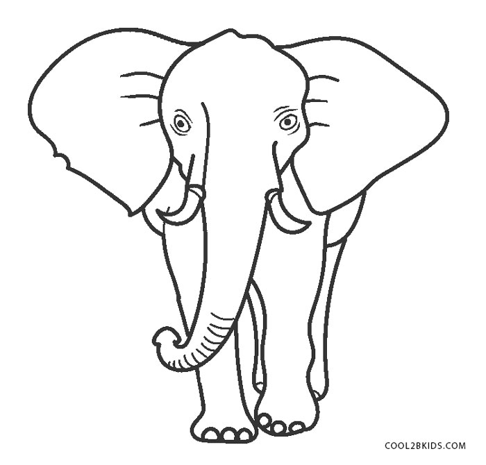 elephant trunk coloring pages asian elephant coloring pages getcoloringpagescom trunk pages elephant coloring