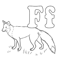 f is for fox coloring page 17 best images about now i know my asl abcs on pinterest fox for f coloring is page