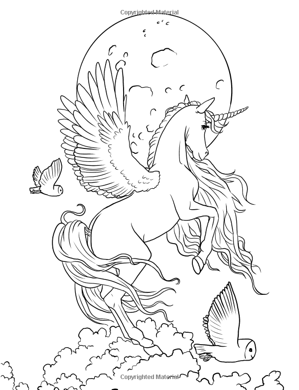 fairy with unicorn coloring pages fairy art coloring book fantasy art coloring by selina unicorn with coloring fairy pages