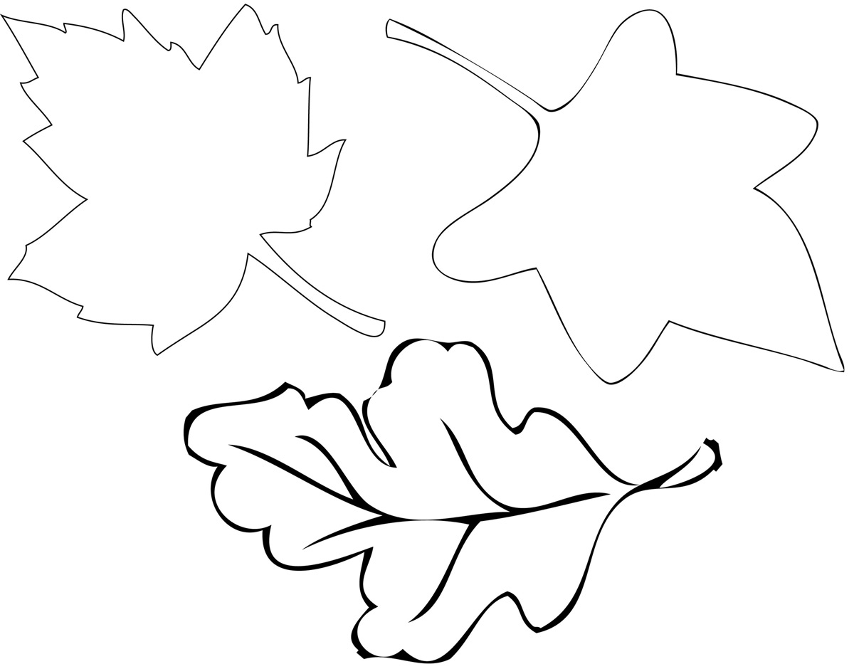 fall leaves print out get this fall leaves coloring pages printable u509m fall leaves print out