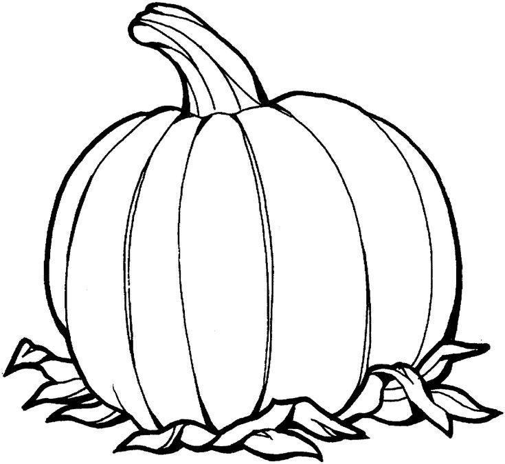 fall pumpkin coloring pages 60 best simple colouring pages images on pinterest fall pumpkin coloring pages