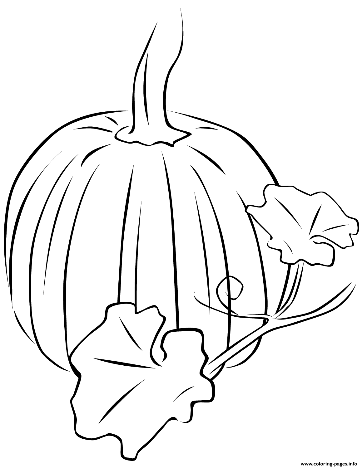 fall pumpkin coloring pages pumpkin halloween fall leaves coloring pages printable fall pumpkin pages coloring