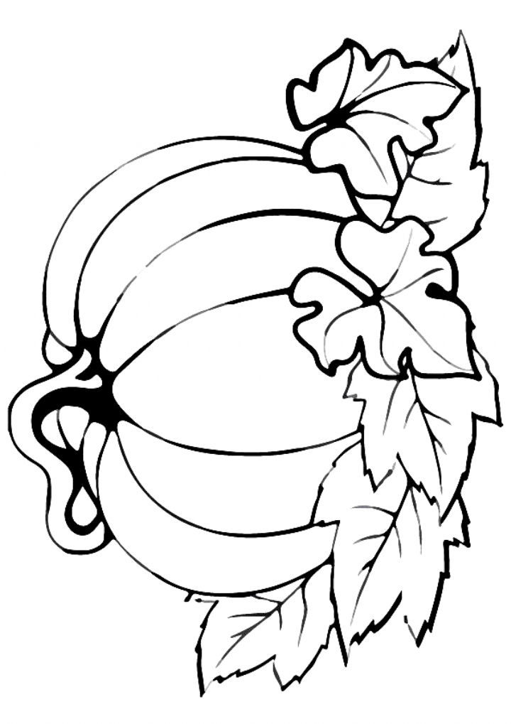 fall pumpkin coloring pages pumpkin with leaves coloring page coloring in 2020 pumpkin pages coloring fall