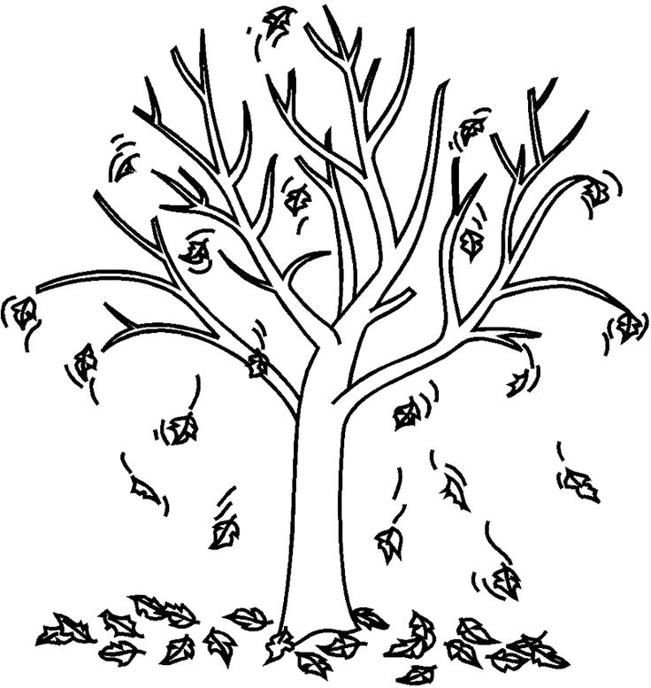 fall trees coloring pages 40 best tree images on pinterest tree branches coloring fall coloring pages trees