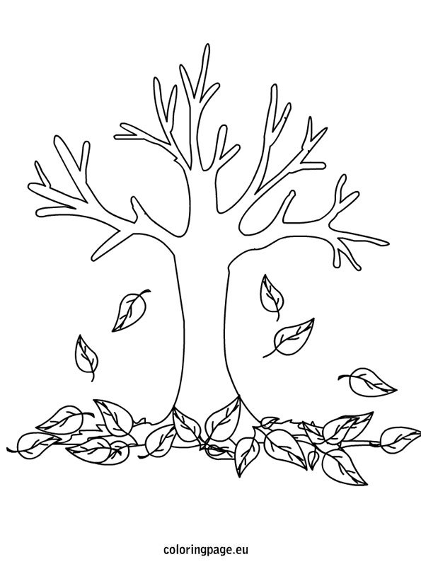 fall trees coloring pages autumn fall tree coloring page fall trees pages coloring