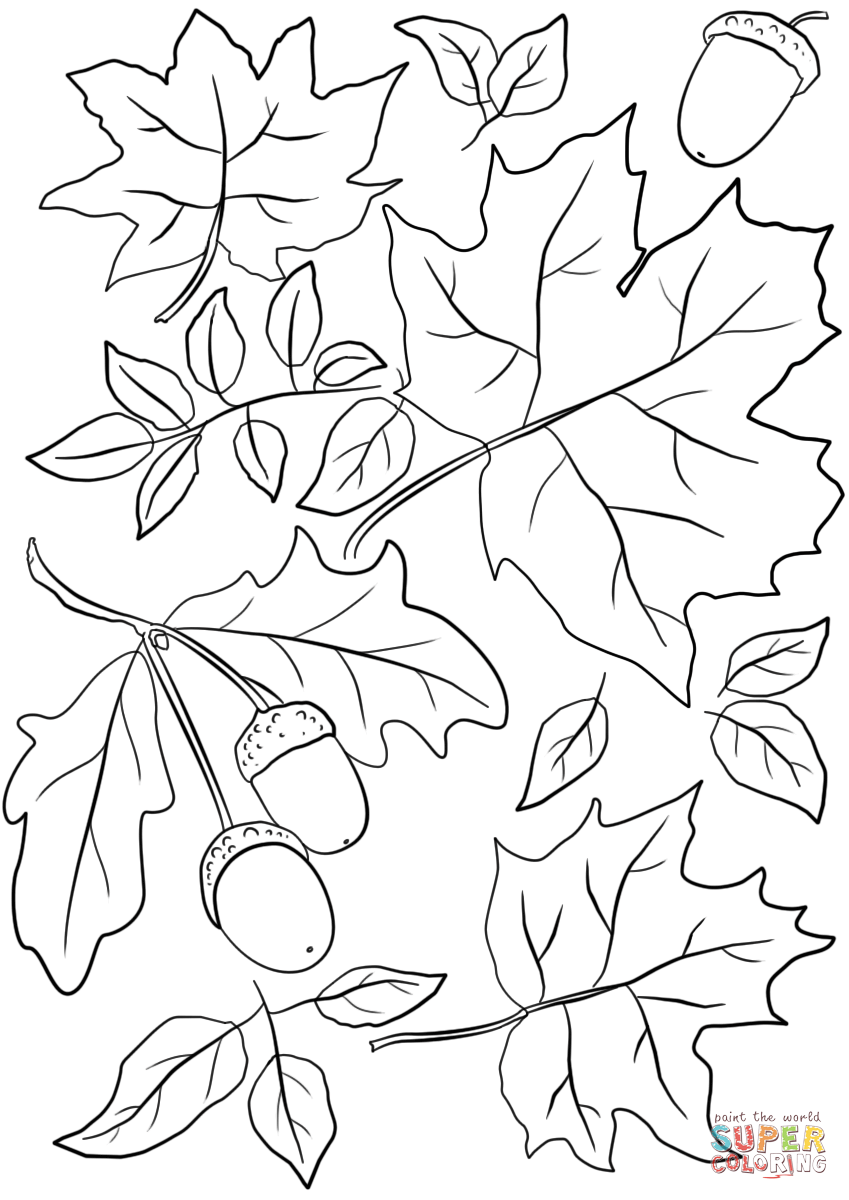 fall trees coloring pages autumn leaves and acorns coloring page free printable fall trees coloring pages