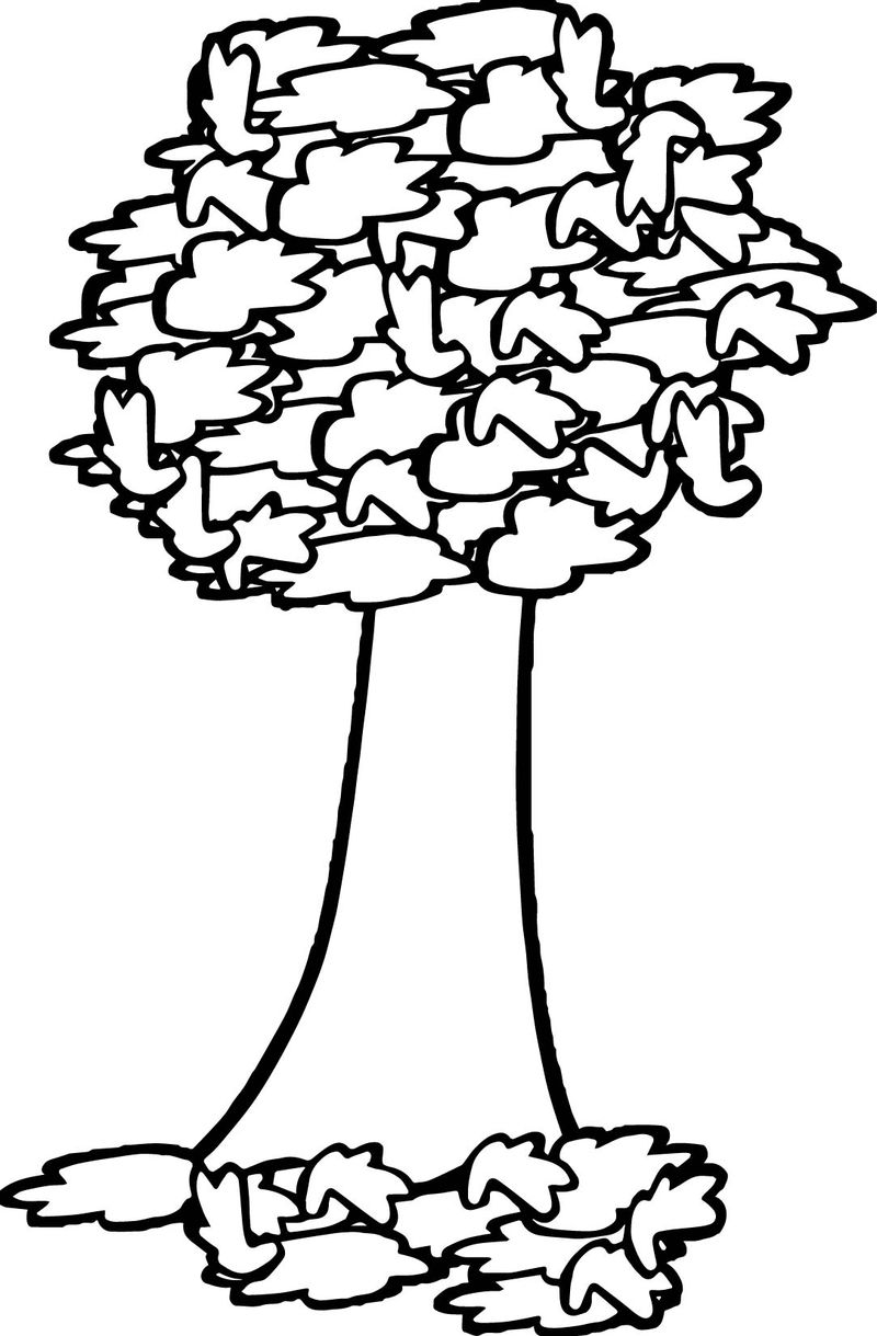fall trees coloring pages autumn tree coloring page coloring sheets pages trees fall coloring