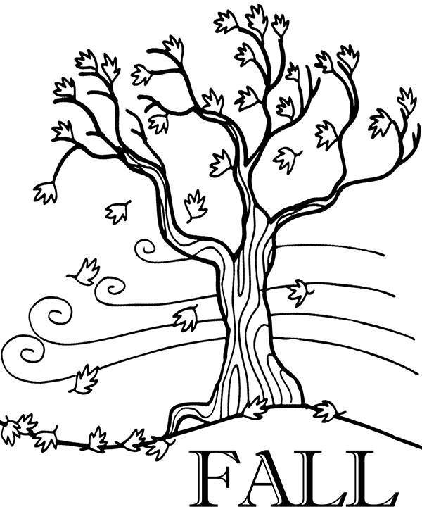 fall trees coloring pages fall printable coloring page with tree and leaves falling trees fall coloring pages