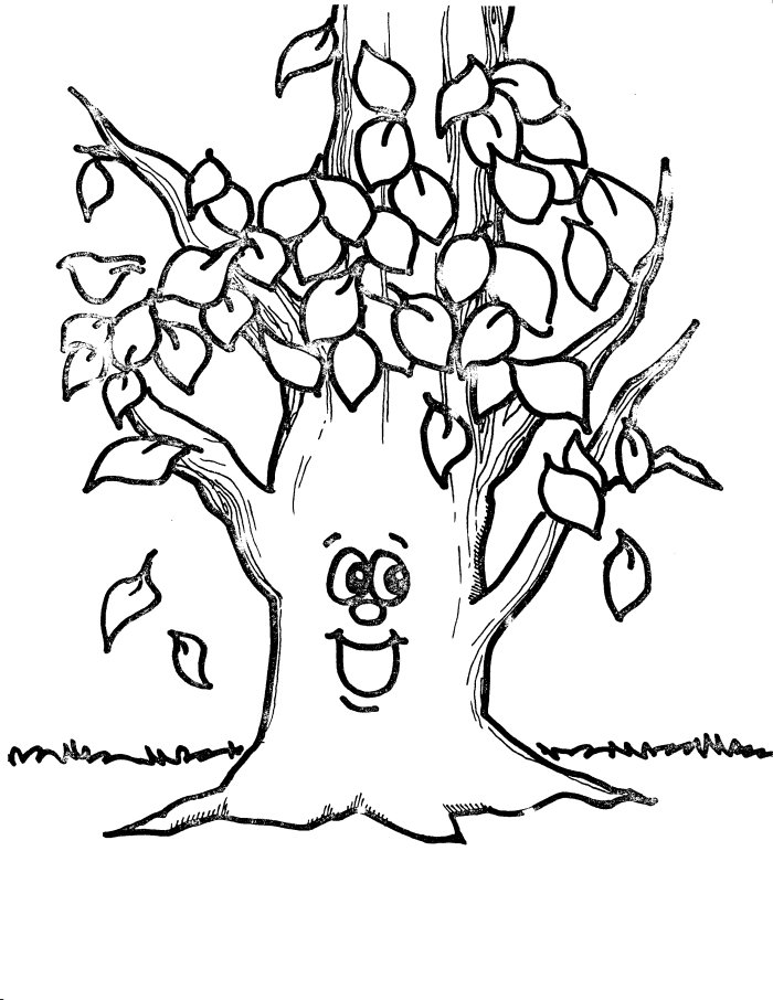 fall trees coloring pages fall seasons janice39s daycare fall pages coloring trees