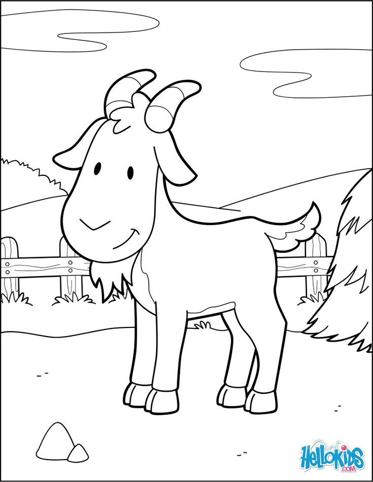 farm animal coloring sheets 105 best images about farm animal coloring pages on pinterest farm sheets coloring animal