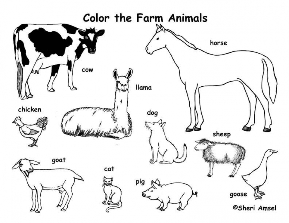 farm animals pictures printable farm animal coloring pages to download and print for free pictures animals farm printable