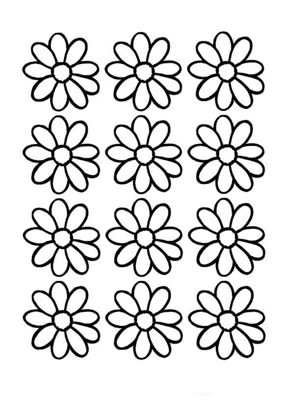 flowers outlines for colouring daisy flower outline  clipartsco flowers colouring for outlines