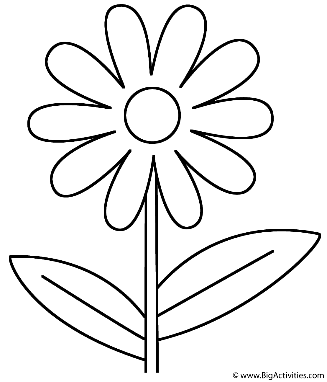 flowers outlines for colouring flower coloring page plants for flowers outlines colouring