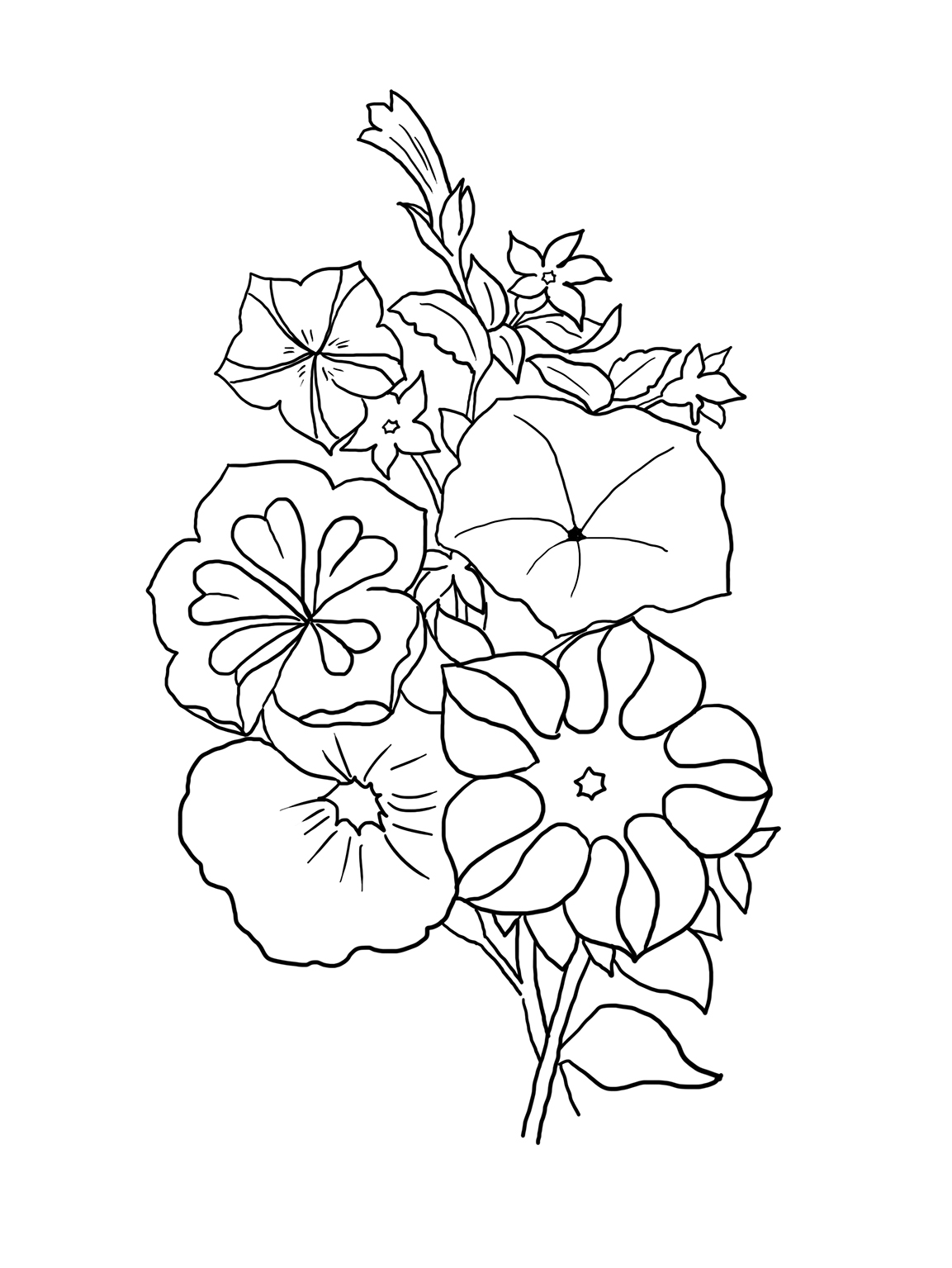 flowers outlines for colouring flower coloring pages outlines colouring flowers for