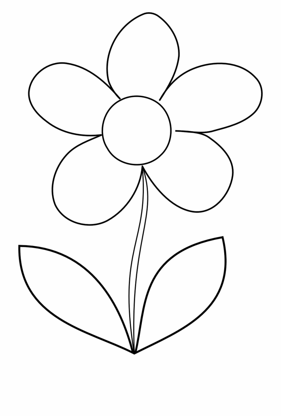 flowers outlines for colouring flower daisy spring outline png image  easy printable outlines for flowers colouring