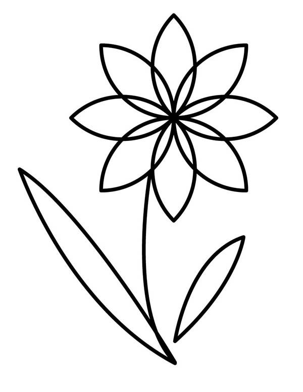 flowers outlines for colouring flower outline coloring page kids play color flowers for outlines colouring