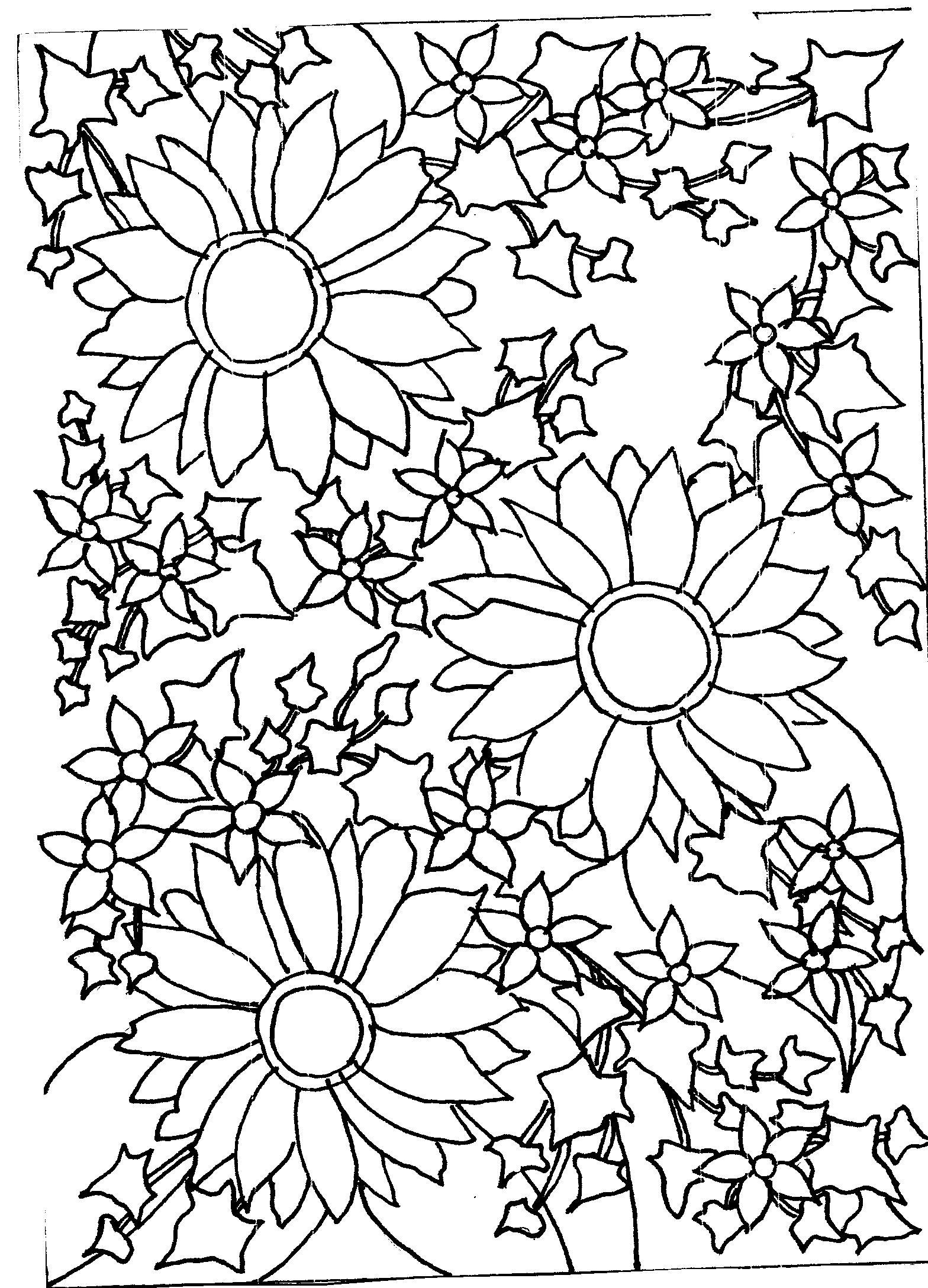 flowers outlines for colouring sunflowers mrs chucklebeary39s garden for colouring outlines flowers
