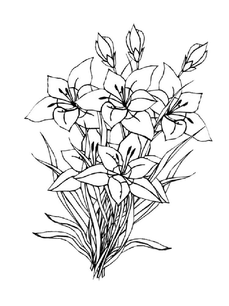 flowers to color get this flowers coloring pages kids printable 2167 flowers color to