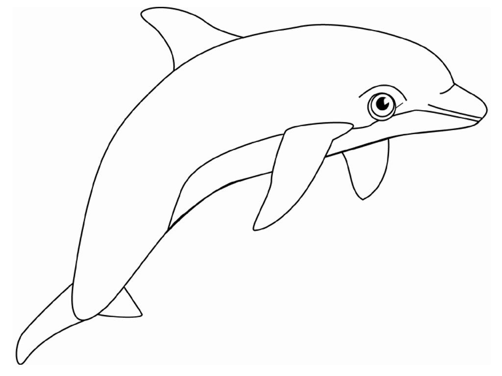 free dolphin pictures to print dolphin outline clip art free dolphin coloring pages to pictures print free dolphin
