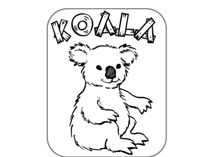 free koala bear coloring pages 23 best images about animals on pinterest coloring coloring bear free pages koala