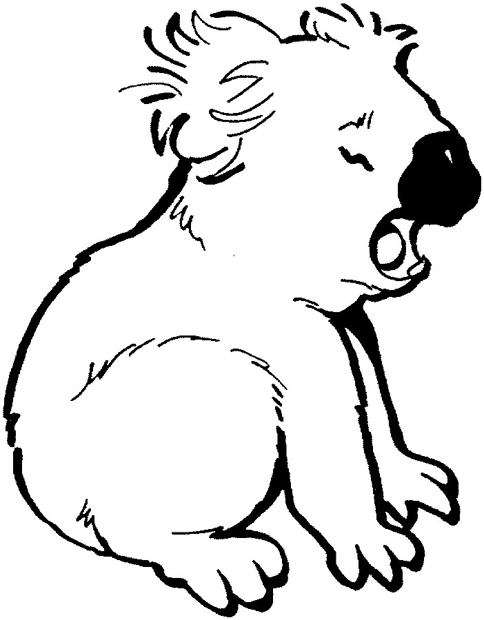 free koala bear coloring pages koala coloring pages to download and print for free coloring koala pages bear free