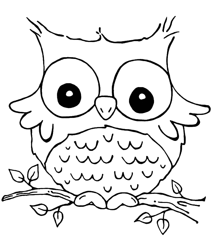 free owl printables owl coloring pages print free printable cute owl coloring free owl printables