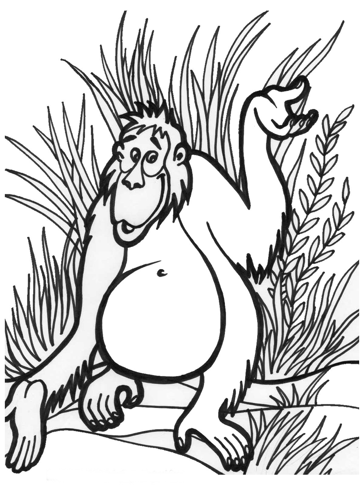 free printable jungle coloring pages jungle book coloring pages to download and print for free free jungle pages coloring printable