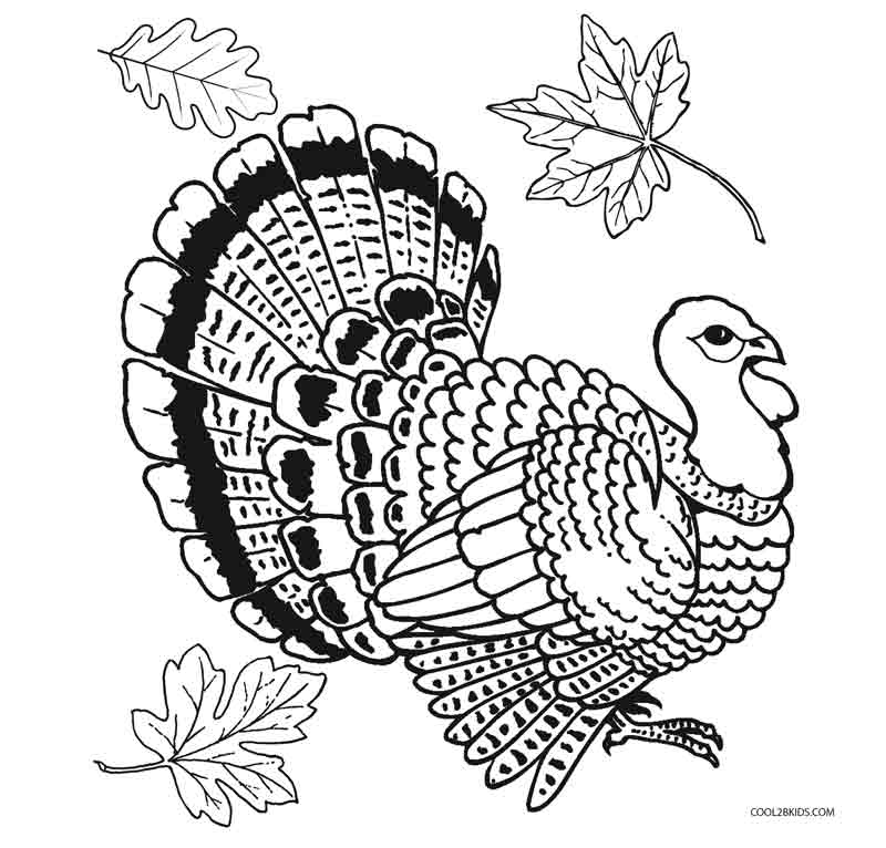 free turkey coloring pages amazing thanksgiving turkey coloring page drive2vote coloring pages free turkey