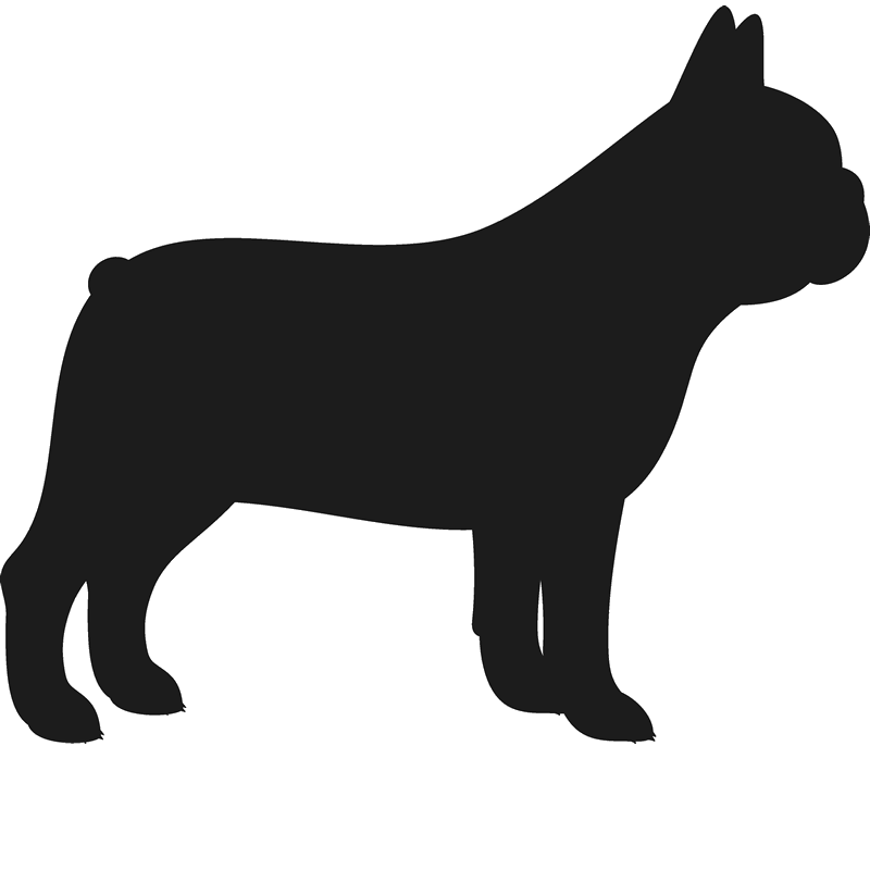 french bulldog silhouette french bulldog metal steel not painted 7 inch usa silhouette bulldog french