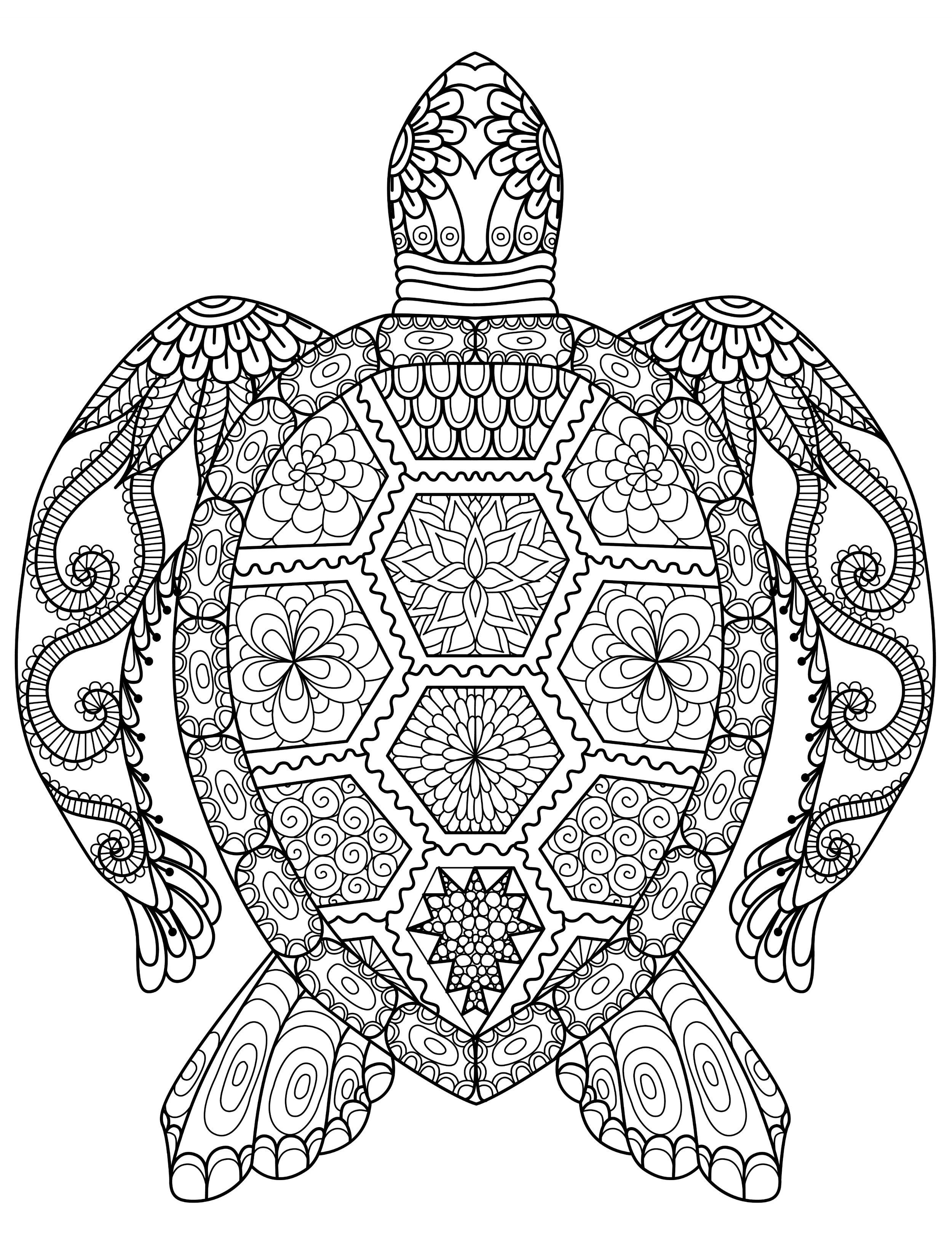 full size coloring pages 20 gorgeous free printable adult coloring pages turtle size full coloring pages