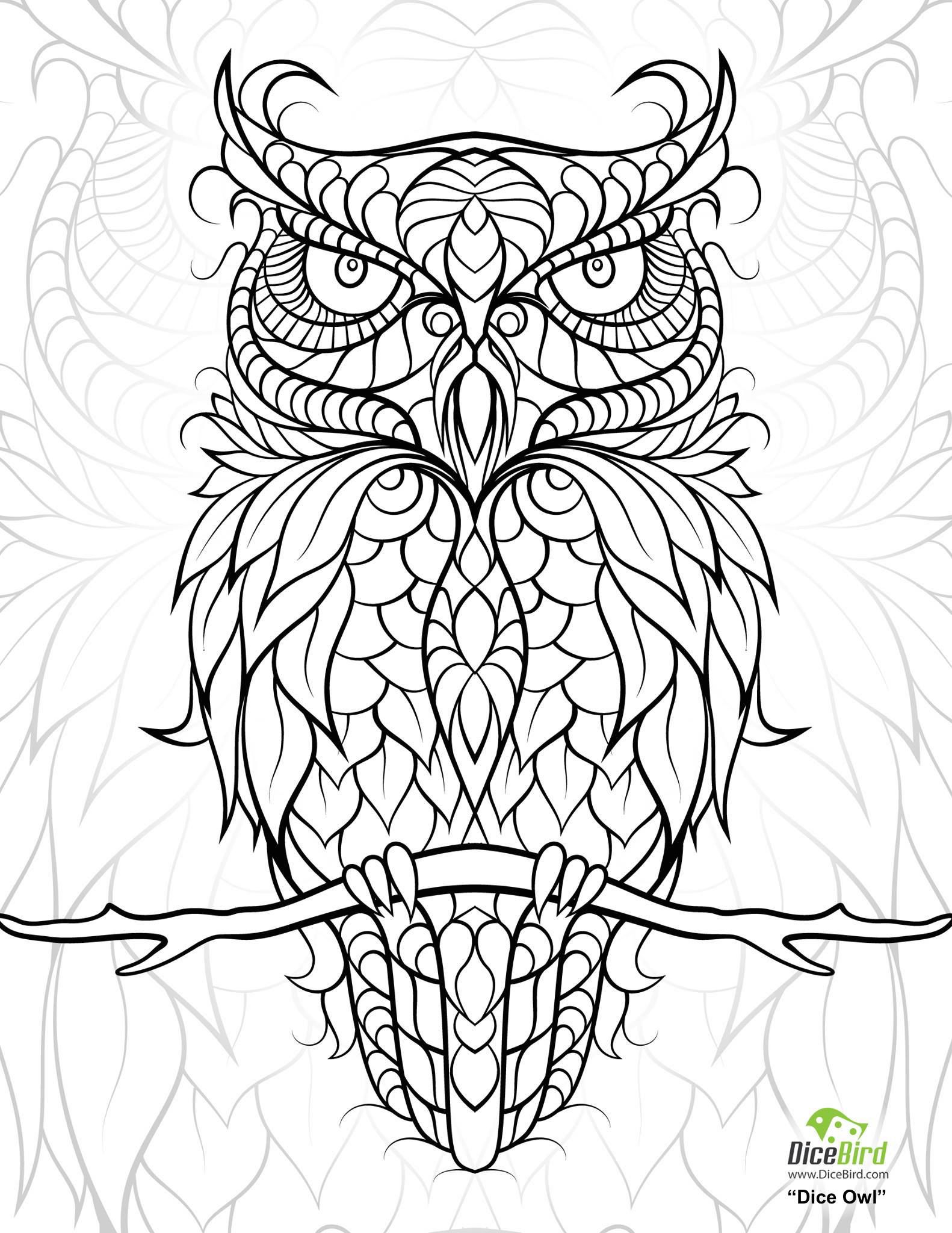 full size coloring pages diceowl free printable adult coloring pages owl coloring size pages coloring full