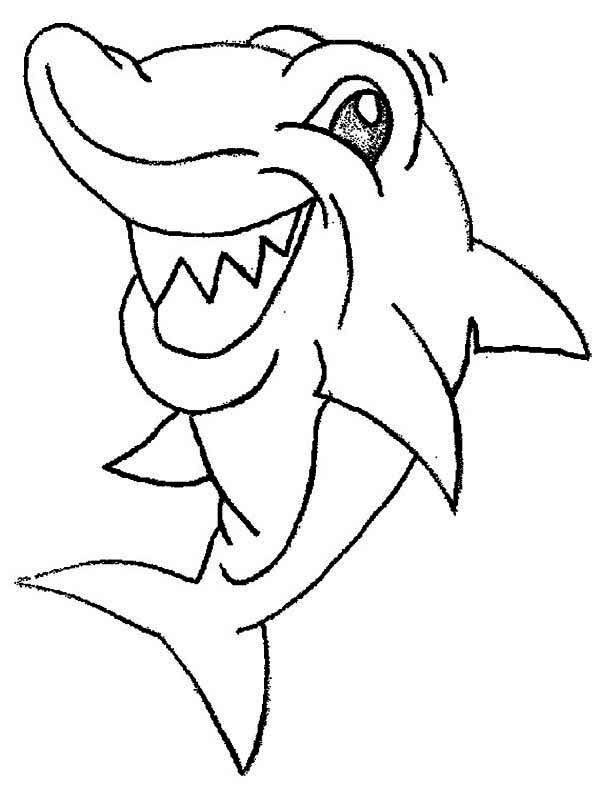 funny shark coloring pages funny shark drawing at getdrawings free download funny coloring pages shark 1 1