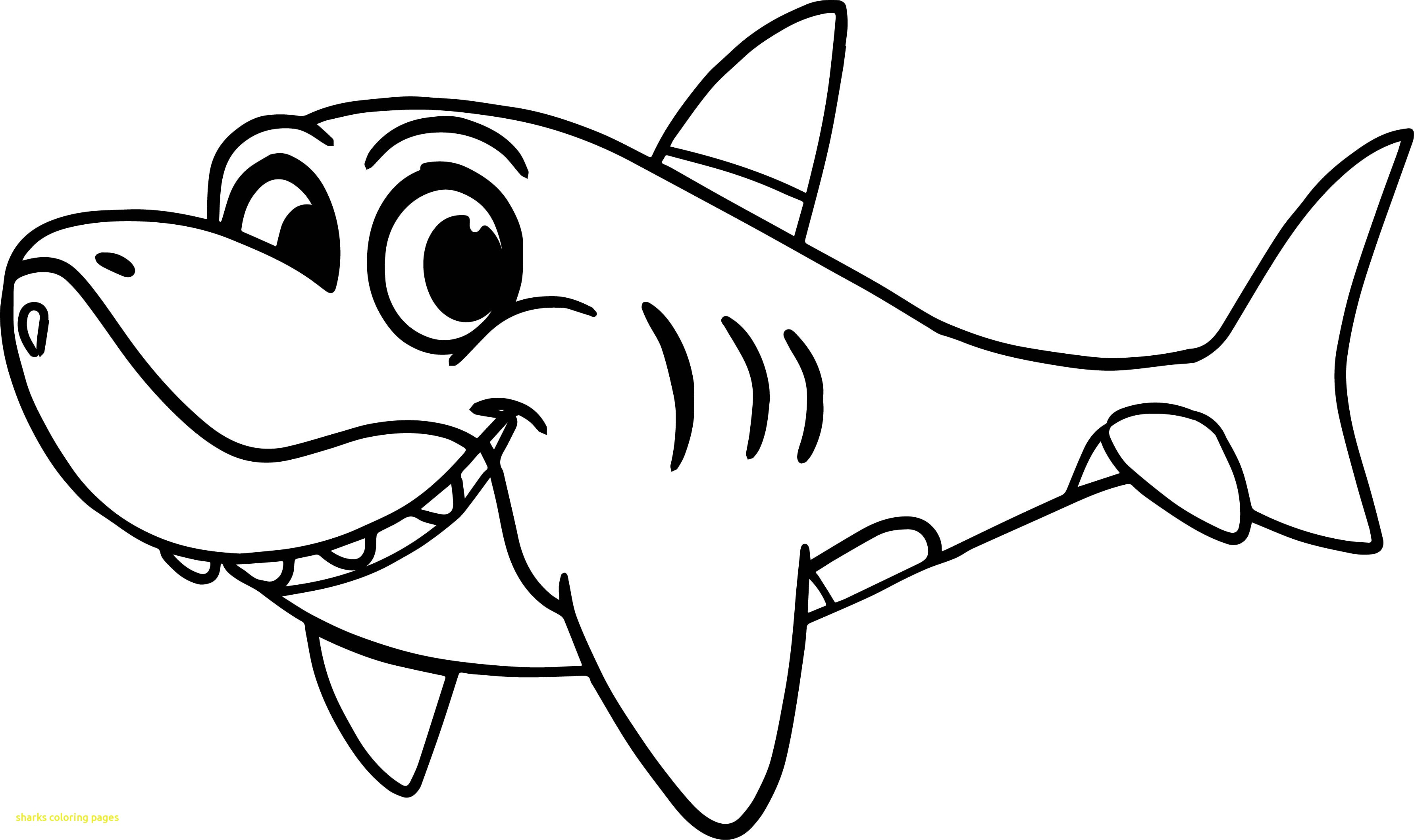 funny shark coloring pages funny shark drawing free download on clipartmag shark coloring funny pages
