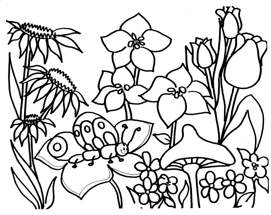 garden colouring pages for kids garden coloring page images for kids coloring home for colouring kids garden pages