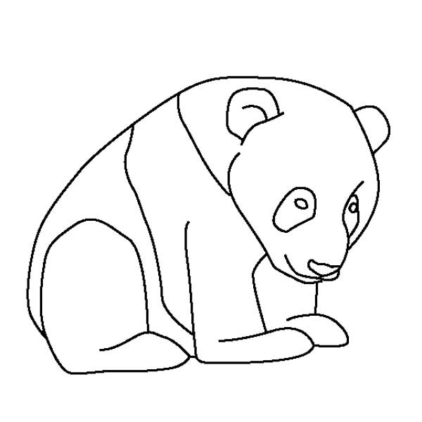 giant panda coloring pages printable giant panda coloring page animals town animal color printable giant pages coloring panda