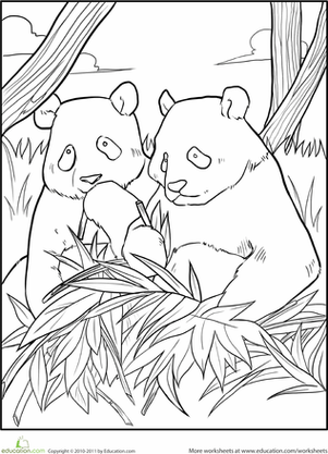 giant panda coloring pages printable giant panda coloring page animals town free giant pages coloring printable panda giant